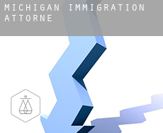 Michigan  immigration attorney