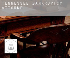 Tennessee  bankruptcy attorney