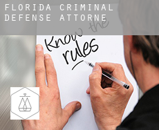 Florida  criminal defense attorney