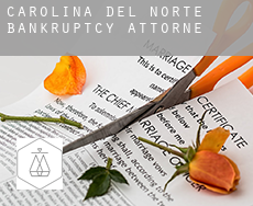 North Carolina  bankruptcy attorney